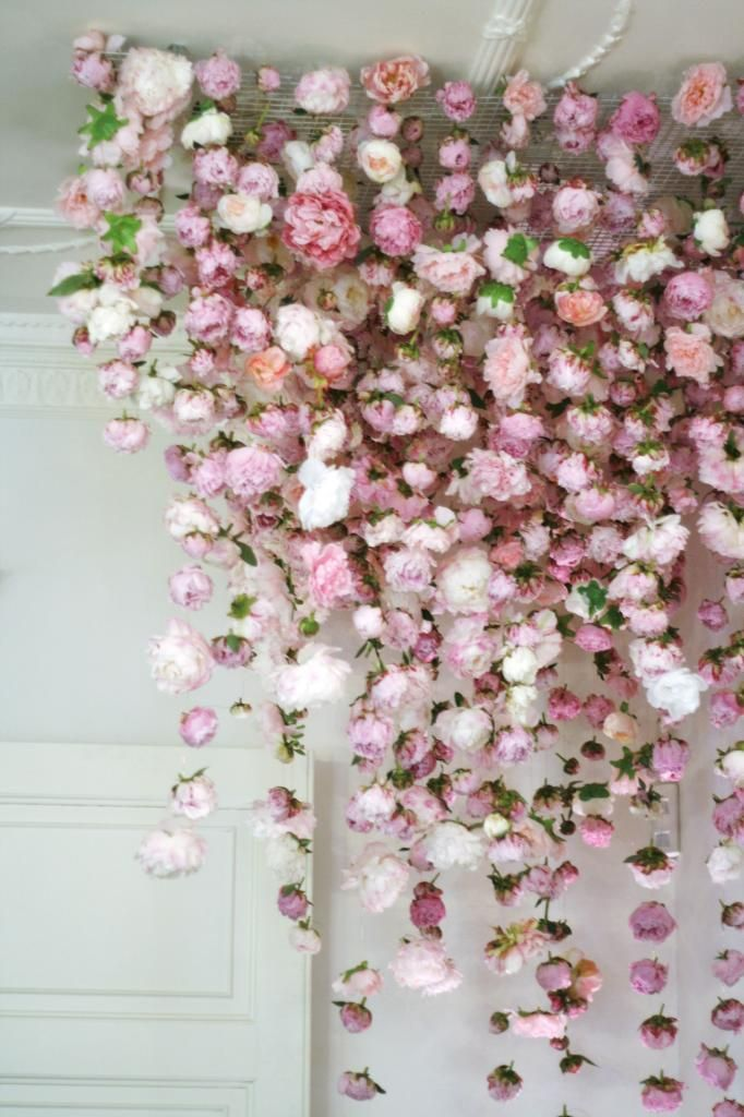 hanging flowers pinterest