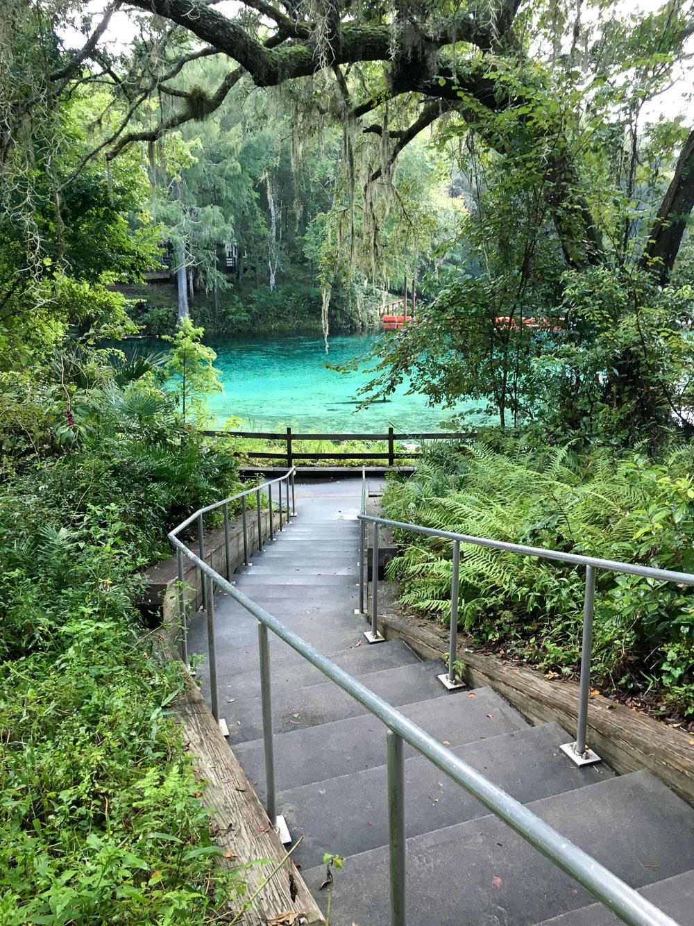 What To Do In & Around Ocala, FL