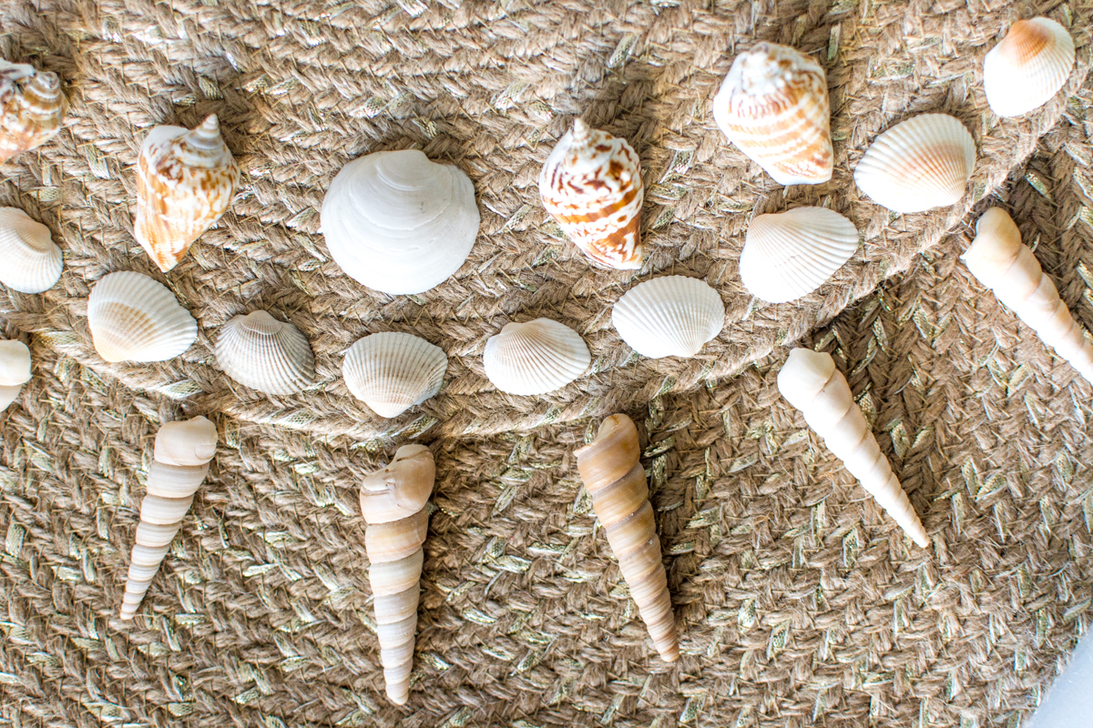 diy seashell placemat purse up close