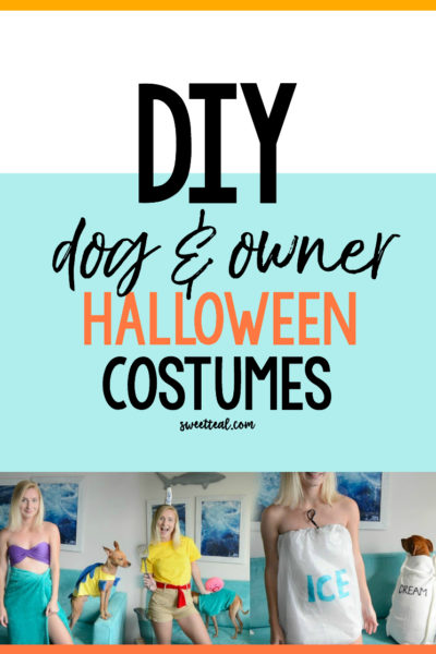 DIY Dog and Owner Costumes