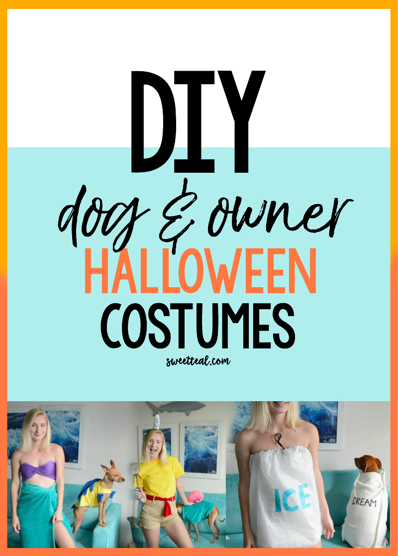 diy dog and owner costumes for Halloween - Sweet Teal