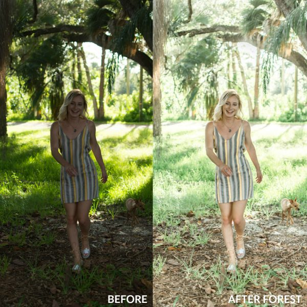 Sweet Teal Golden Collection Lightroom Presets Forest 1