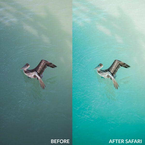Sweet Teal Golden Collection Lightroom Presets Safari 2