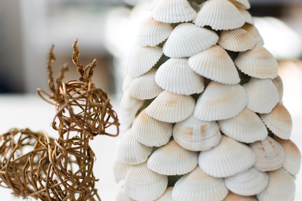 seashell tree - sweet teal
