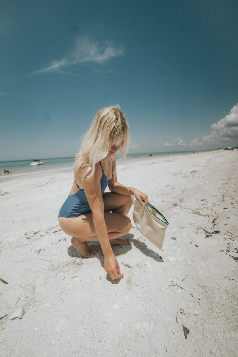 Shelling at Lovers Key Beach