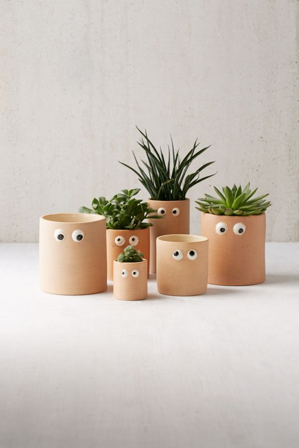 13 Unique Gifts - Googly Eye Planter